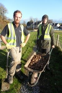 Mabel Wood Tree Planting - November 2013 (24)