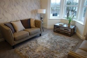 Linden family room web feature