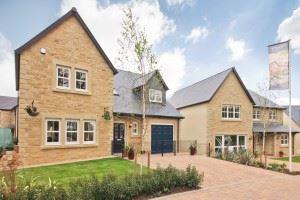 High Wood Warwick show home